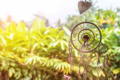 dreamcatcher near plants